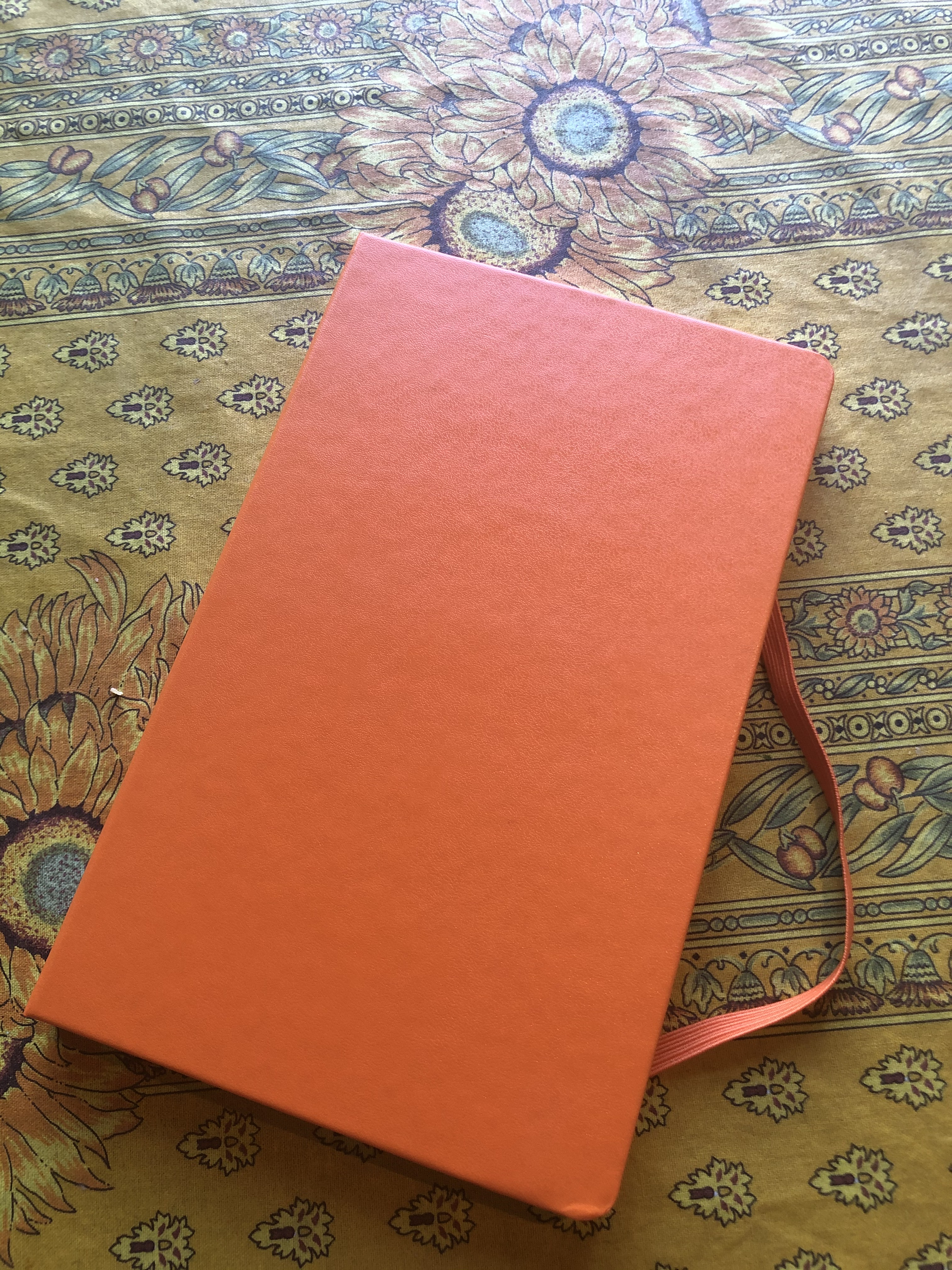 orange diary