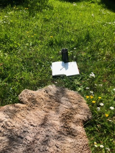 Writing at Alde Valley